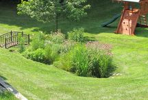 Rain Gardens / These are pictures of rain gardens we have built.