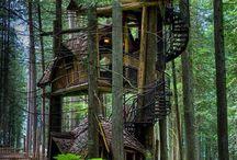 Tree House / Amazing tree houses I would like to have