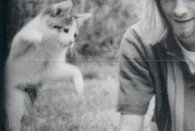 Kurt Cobain~