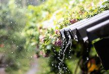]] FEEL RAIN [[