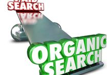 Organic SEO - What will Grossly Mean?