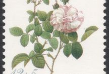Redouté's Roses Stamps / Stamps of paintings by the famous Belgian painter Pierre-Joseph Redouté. http://blog.stampmagazine.co.uk