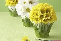 Торты из живых цветов