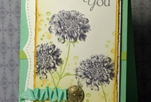 Stampin' Stuff / by Julie Smith