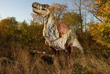 Dinosaurs / All things dinos / by New Jersey Family (njfamily.com)