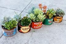 Garden Geek...