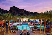 Scottsdale / by Brittney Rosnow