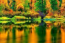 ☮ Kouzelná Příroda ☮ / Tahle nástěnka nepotřebuje komentář... jen se kochat :-) <3
