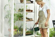 gården, urter og grønsaker