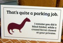 Parking Wars / by Bobi Rockwell