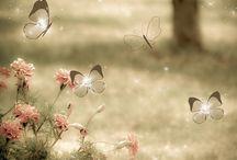 """L'envolée du papillon / """"Les papillons ne sont que des fleurs envolées un jour de fête où la nature était en veine d'invention et de fécondité."""" George Sand - Contes d'une grand-mère"""