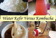 kombucha & kefir
