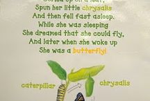 pre school - the hungry caterpillar
