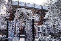 Dream School Oxford / by Marie S