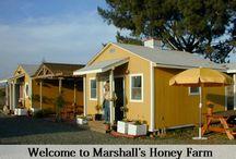 Down on the Farm / Marshall's Farm
