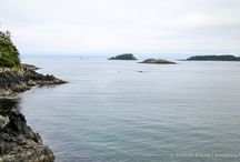 Vancouver Island Road Trip / by Sharon | The Honour System