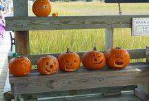 Dewees Island Halloween / How does an environmentally friendly island celebrate Halloween>