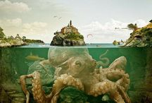 For the love of Architeuthidae / Behold the mighty Kraken! Octopuses and squids from around the world