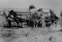 They came in Wagons / My moms family came in the wagon trains 1842 and 1848 / by Beverly Gilson