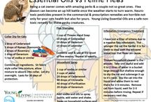 Essential oil blends for cat