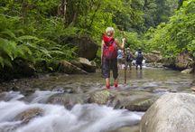 Trekking In Neora Valley National Park