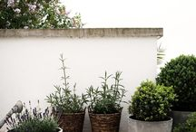 garden/balcony