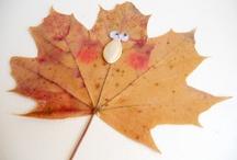 4. rajzfeladatok - ősz