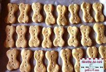 biscotti cani