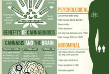 Science of Cannabis