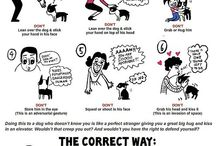 Doggy language and other information / Usefull information