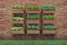 kvetinace na zahrade