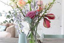 Bloemen/ planten