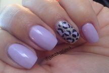 Heirloom Lilac