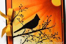 cartes oiseauc