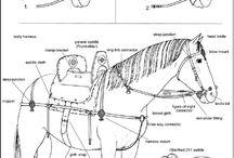 Konno i zbrojno