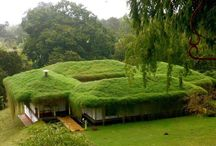 verde vivo / techos y muros verdes