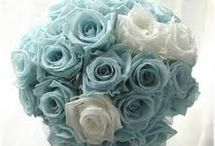 - Her Wedding - / Ideas for a specific wedding. Think Tiffany blue and beautiful people. :) / by David Crandall