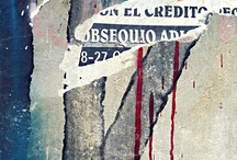 kroons kollektion - letra latina