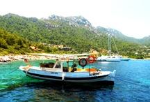 Türkiye'de :)