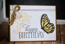 Stampin' Up! - You've Got This / by Kim Miller