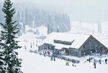 Powder Day!! / Ski the Most Snow in Colorado! / by Wolf Creek Ski Area