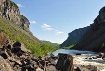 Drømmen om nord / Turar og opplevingar i Nord-Noreg