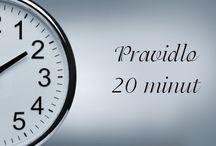 Jen 20 minut