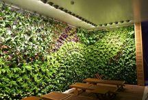 diseño jardines / jardines exteriores
