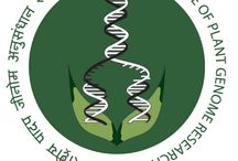 National Institute of Plant Genome Research NIPGR Recruitment 2016