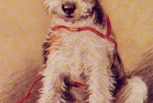 I love Wire Fox Terriers