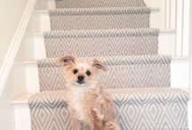 Dogs, puppies and our favourite floors / If there's one thing we love just a little more than beautiful natural floor, it's dogs or puppies on carpets and rugs. Enjoy!
