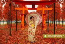 Funtastic Japan Autumn Backpacker Trip [operator 100% Traveller] / November 14 - 20, 2013 Osaka, Kyoto, Tokyo, Kawaguchi Link : http://triptr.us/s9