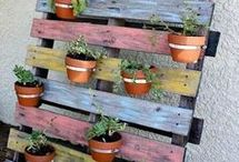 Garden decoration / Pallets, ladders
