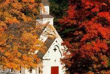 Here's the Church here's the steeple. ... / by Deborah Graden